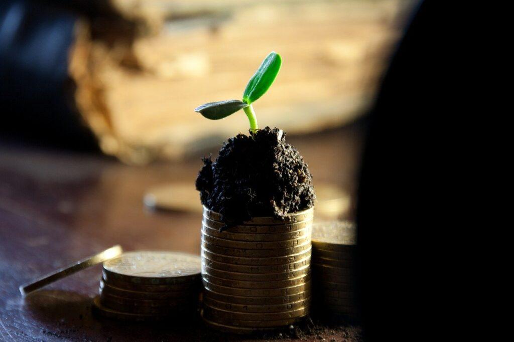 return_of_investment